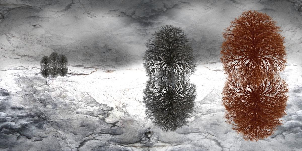 S.Sensoy Baum-Landschaft VI