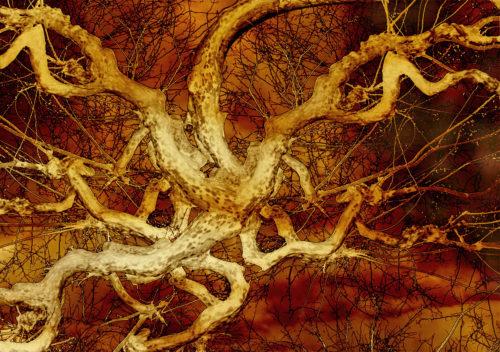 Suat Sensoy. Bäume-Artefakte VII